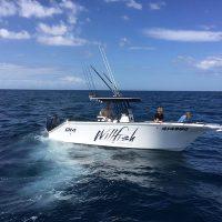 Willfish Boat SM