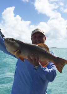 will ogilvie fishing charters brisbane