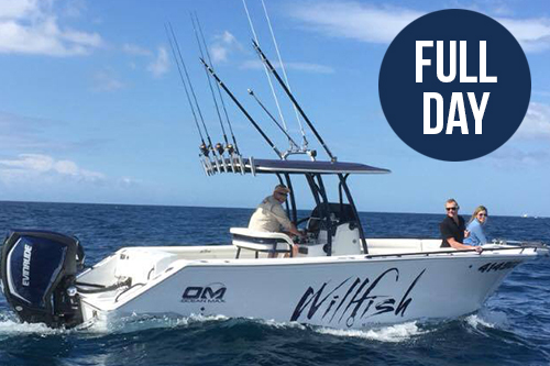 Full day gold coast fishing charter small groups willfish for Gold coast fishing charters