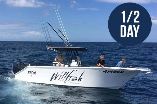 willfish half day gold coast fishing charter