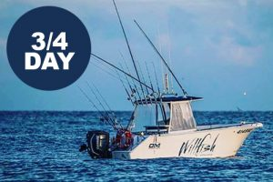 willfish whitsundays 3/4 day