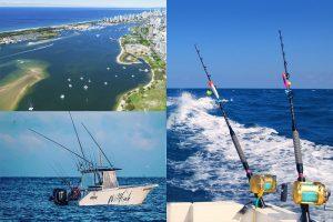 Willfish custom fishing tours
