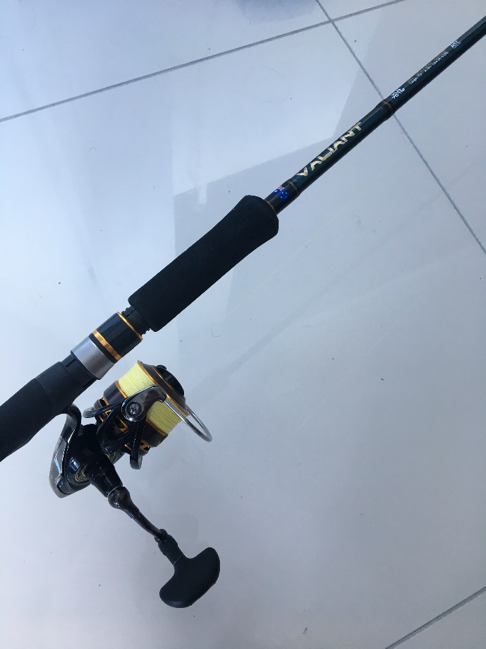 Willfish: Whistsunday fishing charters light gear