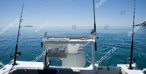 whitsunday fishing