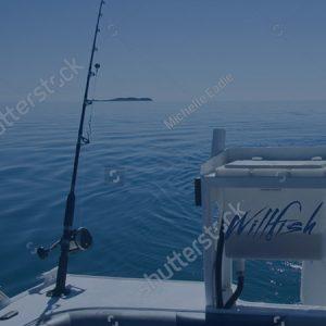 whitsunday fishing mobile