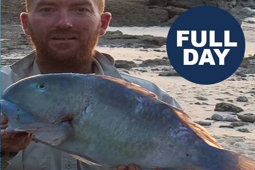 Willfish Full Day Tour (new)