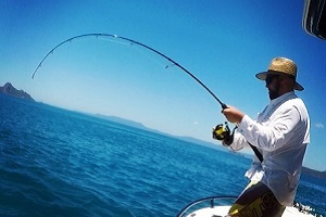 Snapper Fishing Tips Whitsundays